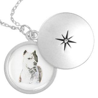 Médaillon Avec Fermoir Pitbull Terrier américain