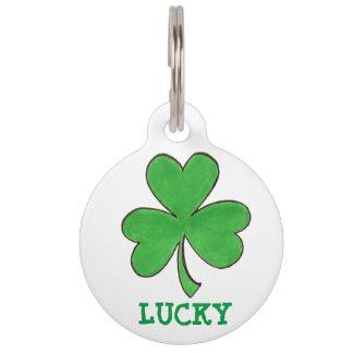 Médaillon Pour Animaux Étiquette de chien irlandaise verte chanceuse de