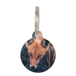 Médaillon Pour Animaux Le Fox rouge