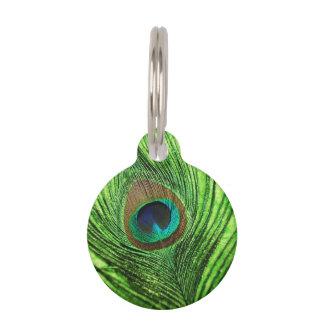 Médaillon Pour Animaux Vert de chaux de paon