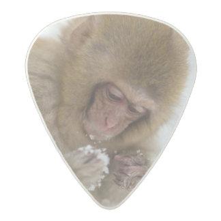 Médiator Acetal Singe japonais de neige du Macaque   de bébé