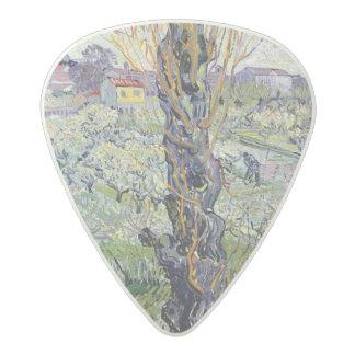 Médiator Acetal Vue de Vincent van Gogh   d'Arles, 1889