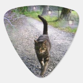 Médiators Avenue de chat