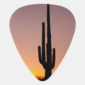 Médiators Cactus de Saguaro au coucher du soleil