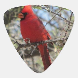 Médiators Cardinal
