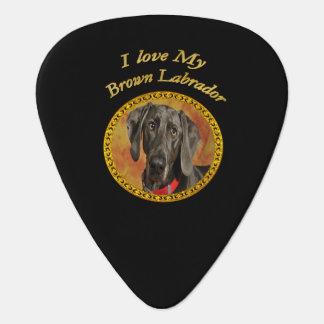 Médiators Chiot brun de canine de Labrador d'elegan