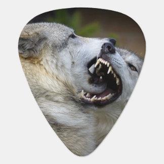 Médiators Combat de loup