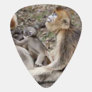Médiators Deux singes d'or femelles avec des nouveaux-nés