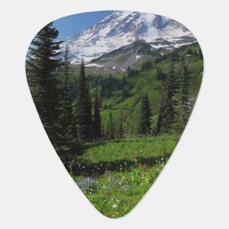 Médiators Fleurs sauvages chez le mont Rainier