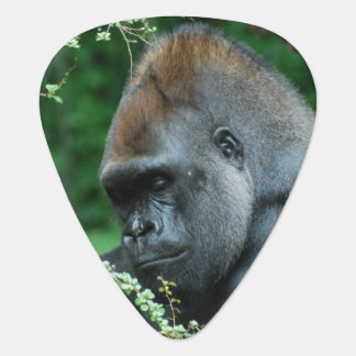 Médiators Gorille sinistre