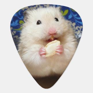 Médiators Hamster syrien pelucheux Kokolinka mangeant une