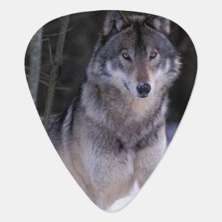 Médiators L'Amérique du Nord, Canada, Canada oriental, loup