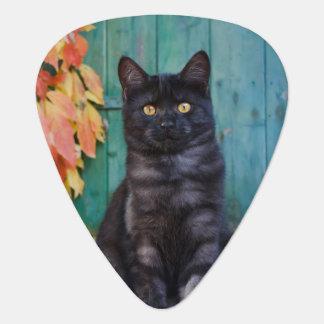 Médiators Le chaton mignon de chat noir avec le rouge part