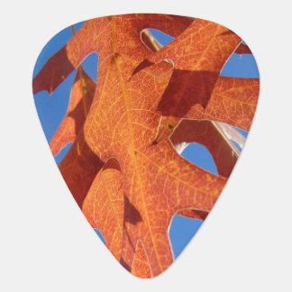 Médiators Le chêne d'automne part de l'onglet de guitare