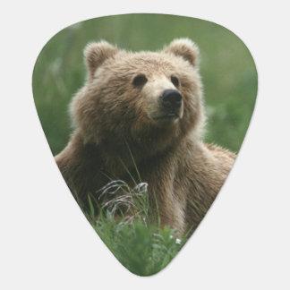Médiators Les Etats-Unis, Alaska, ours bruns de sous-adulte