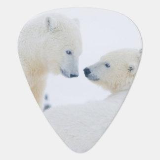 Médiators Les Etats-Unis, Alaska, plaine 1002 côtière de