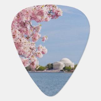 Médiators Les Etats-Unis, Washington DC, cerisier