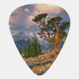 Médiators Les Etats-Unis, Wyoming, Teton grand NP. Le lever
