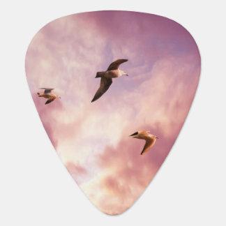 Médiators Mouettes volant dans un ciel de coucher du soleil