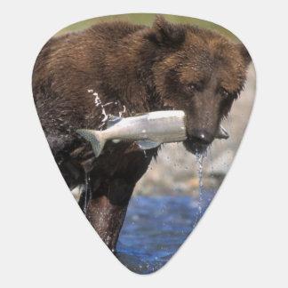 Médiators Ours de Brown, ours gris, avec le crochet saumoné,