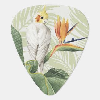 Médiators Palmettes avec l'oiseau blanc