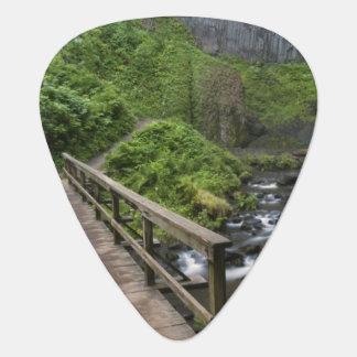 Médiators Pont aux automnes de Latourell, gorge du fleuve