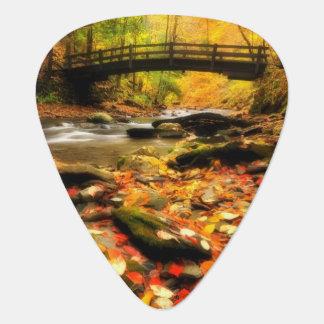 Médiators Pont en bois et crique dans l'automne