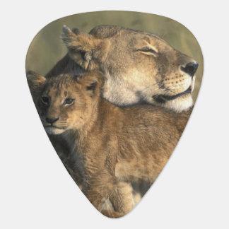 Médiators Réservation de jeu du Kenya, Mara de masai, lionne