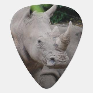Médiators Rhinocéros amical