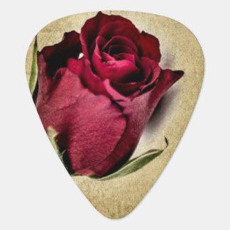 Médiators Roses rouges majestueux sur l'arrière - plan