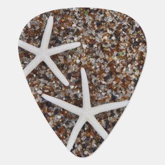 Médiators Squelettes d'étoiles de mer sur la plage en verre