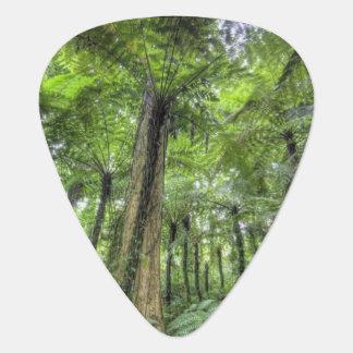 Médiators Vue de végétation dans les jardins botaniques de