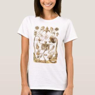 Méduses T-shirt