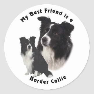 Meilleur ami border collie sticker rond