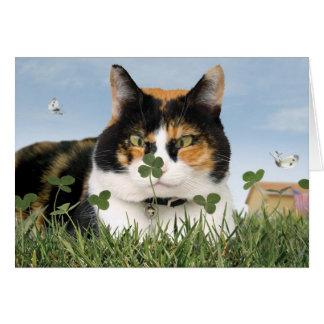 Meilleur mignon drôle de carte de chat du jour de