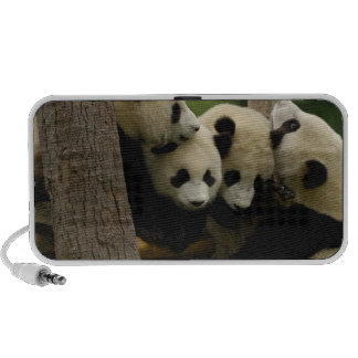 Melanoleuca d'Ailuropoda de bébé de panda géant) 4 Haut-parleur Mobile