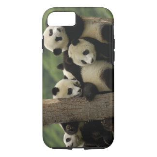Melanoleuca d'Ailuropoda de bébés de panda géant) Coque iPhone 7