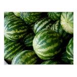 Melons Cartes Postales