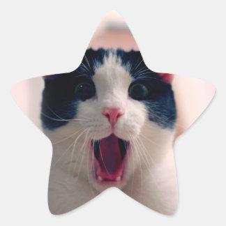 Meme de chat - chat drôle - memes drôles de chat - sticker étoile