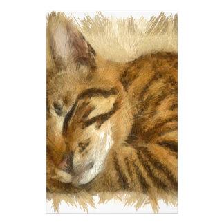 Mensonge laissé de chats de sommeil papeterie