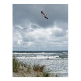 Mer orageuse carte postale