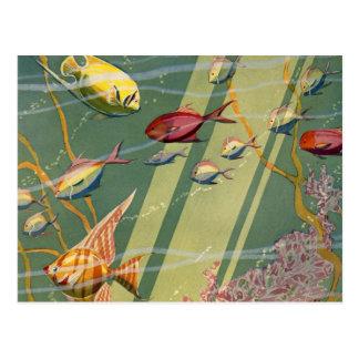 Mer sous-marine d'océan de poissons antiques carte postale