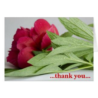 … merci… cartes