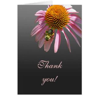 Merci de Coneflower Carte De Vœux