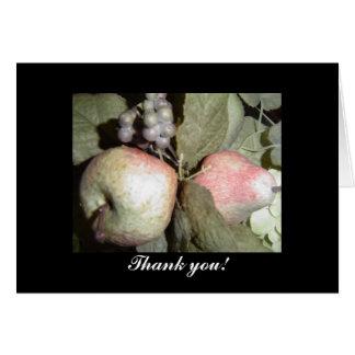 Merci de disposition de fruit carte de vœux