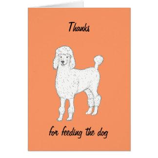 Mercis de caniche d'alimenter la carte de chien