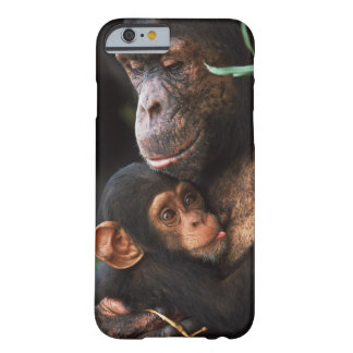 Mère de chimpanzé entretenant le bébé coque barely there iPhone 6