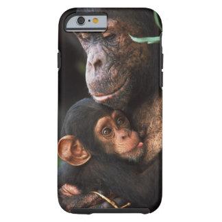 Mère de chimpanzé entretenant le bébé coque tough iPhone 6