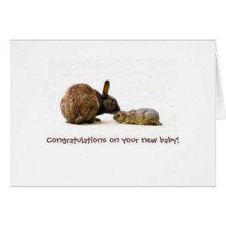 Mère de lapin et bébé - nouvelle carte de bébé