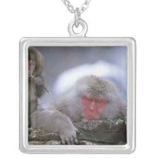 Mère de singe de neige et enfant, Jigokudani, Pendentif Carré